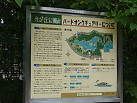2011100320a