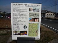 2012011313