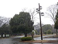 2012030202