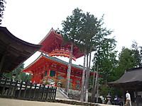 2012051554