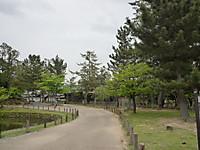 2012051614_4