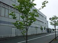 2012051806