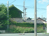 2012090115