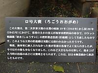 2012090328