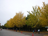 2012111201